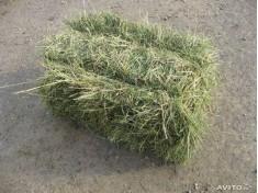 Луговое сено в тюке (вес 16-20кг)